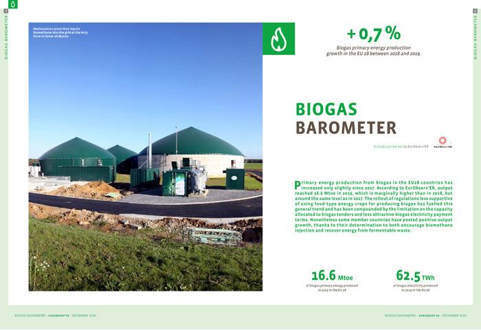 barometre-biogaz-2020-en